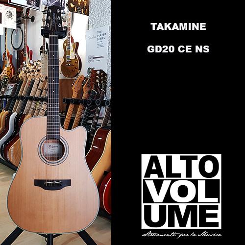 TAKAMINE GD20CE-NS