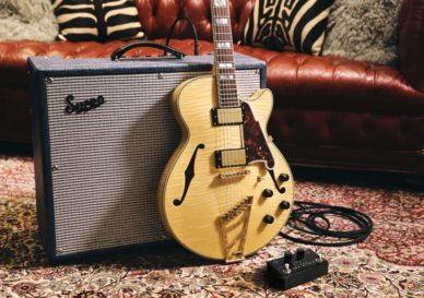 d'angelico guitars pigtronix