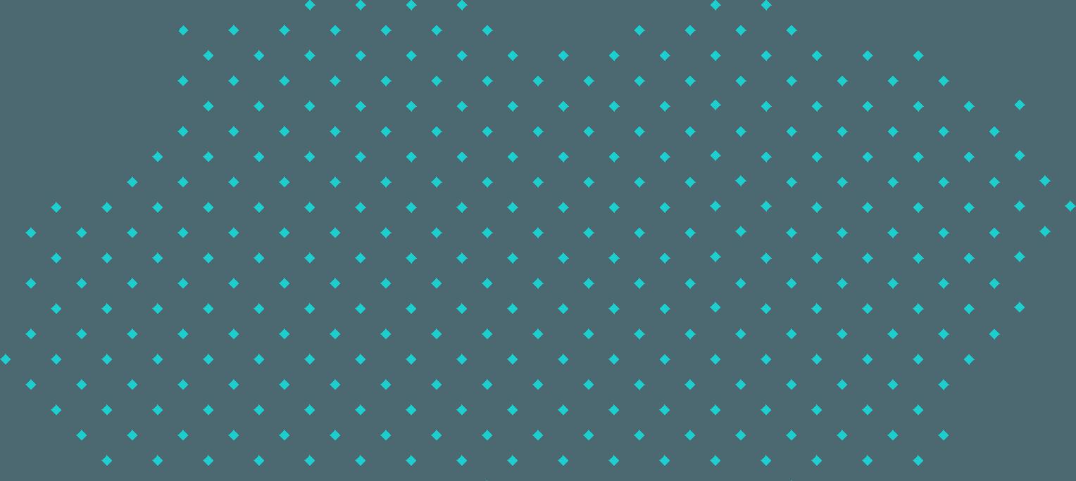 slider dot img 1